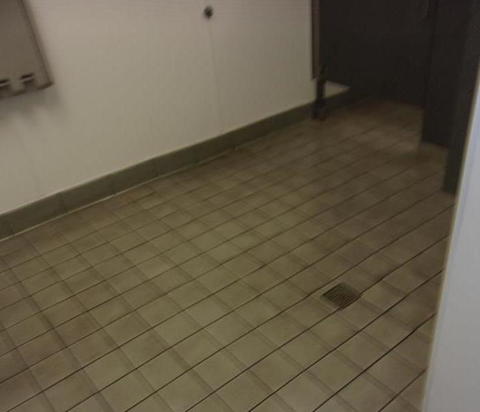 Retail Restroom Cleanup