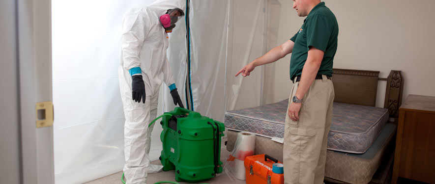 Bakersfield, CA mold removal process